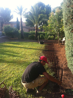 Gartenpflege auf Mallorca